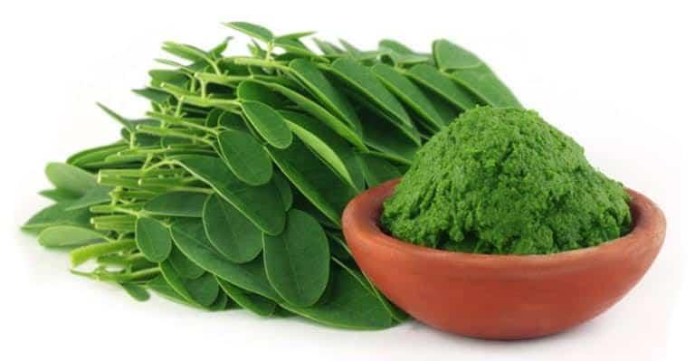 moringa oleifera ayurvedic medicine for sexually long time