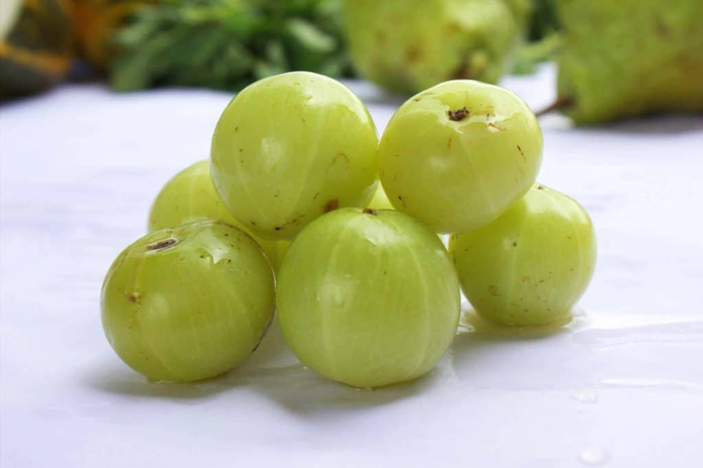 ayurvedic treatment for premature ejaculation with amla